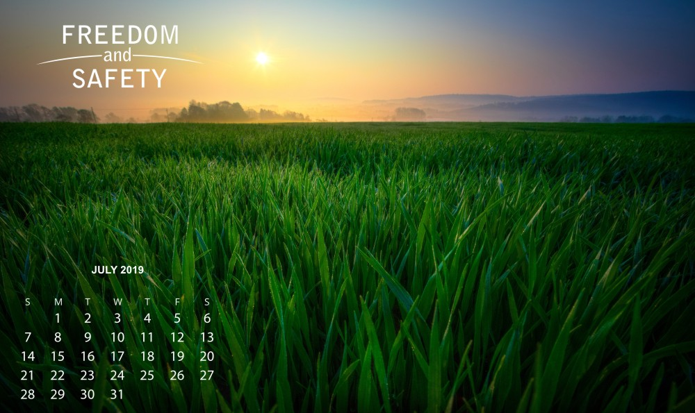 Freedom and Safety July 2019 Calendar