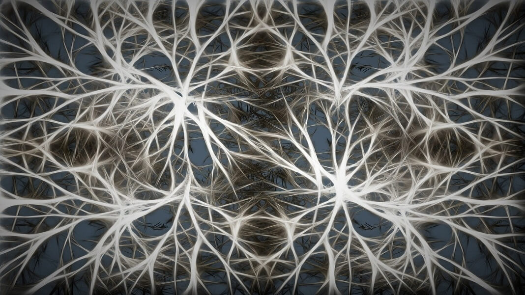 Scientists Linked Artificial and Biological Neurons in a Network—and Amazingly, It Worked
