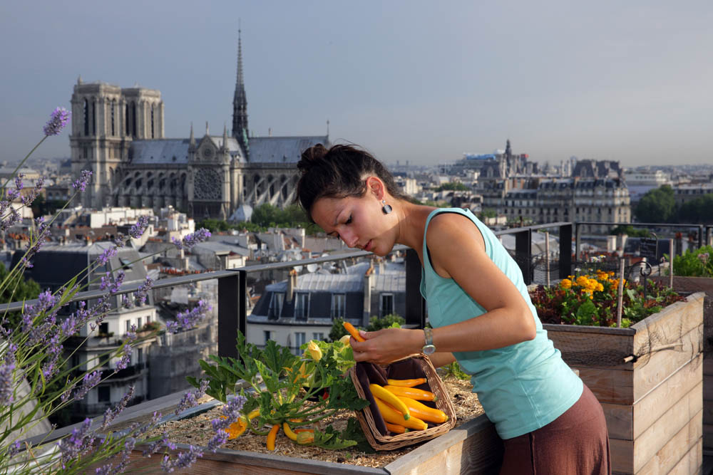 This Belgian Start-up Allows Anyone to Become an Urban Farmer