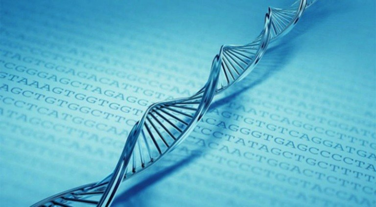 Big Genetic Data