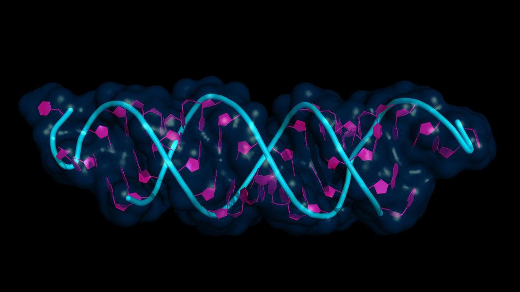 Editing RNA Expands CRISPR's Use Far Beyond Genetic Diseases