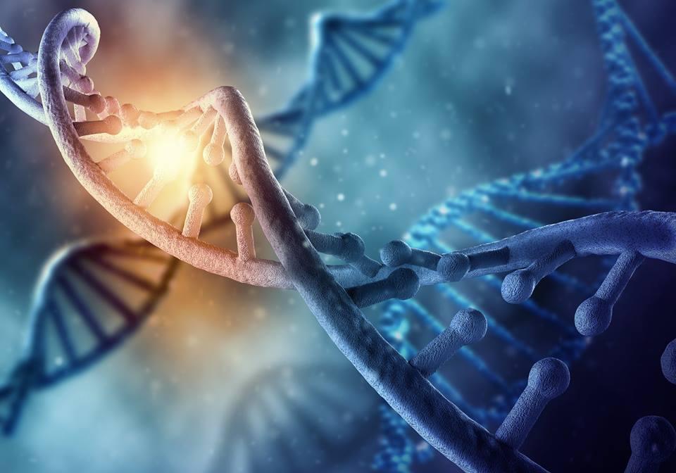 ID disease-causing genetic changes