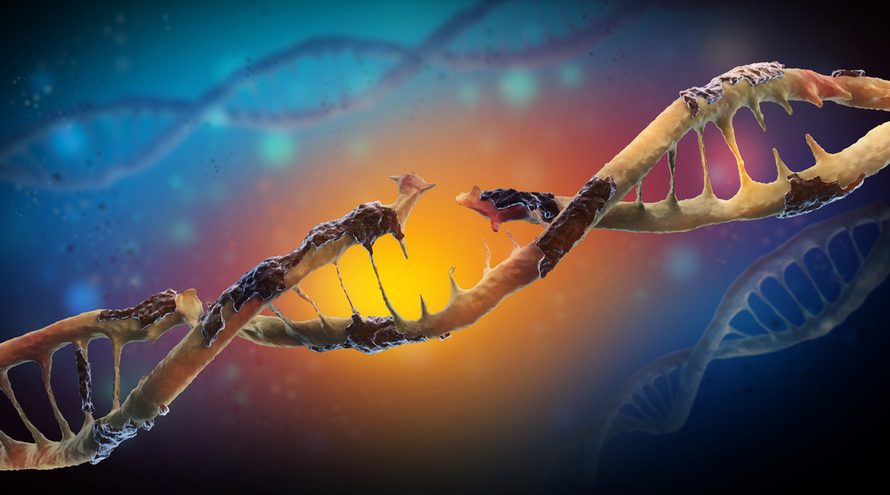 Hallmarks of Aging: Genomic Instability