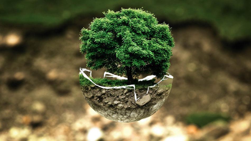The Future of Green Economics