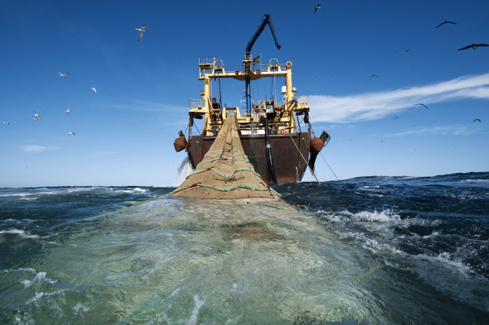 We Have the Tools to Tackle Illegal Fishing. Its Time to Use Them