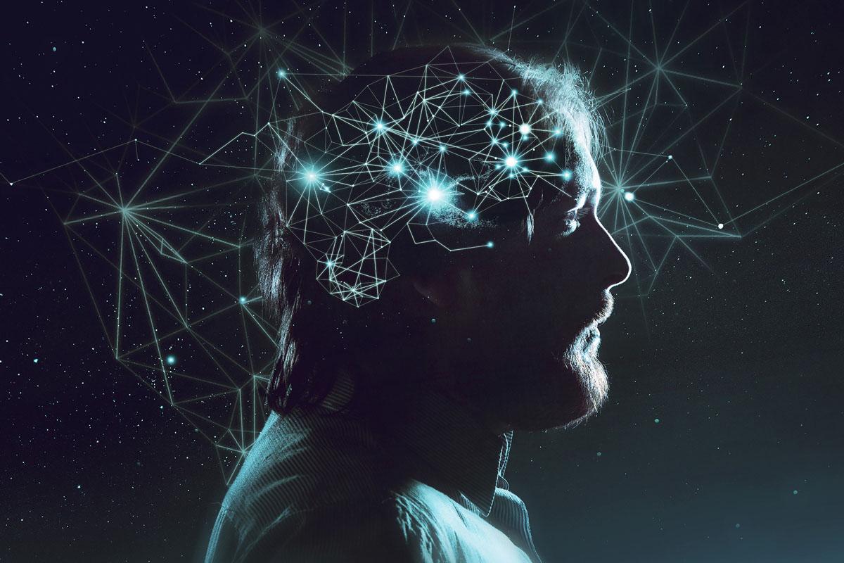 The Human Brain Sees the World as an 11-dimensional Multiverse