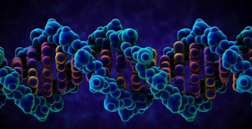 Scientists Have Unlocked the Code That Turns Genes On and Off