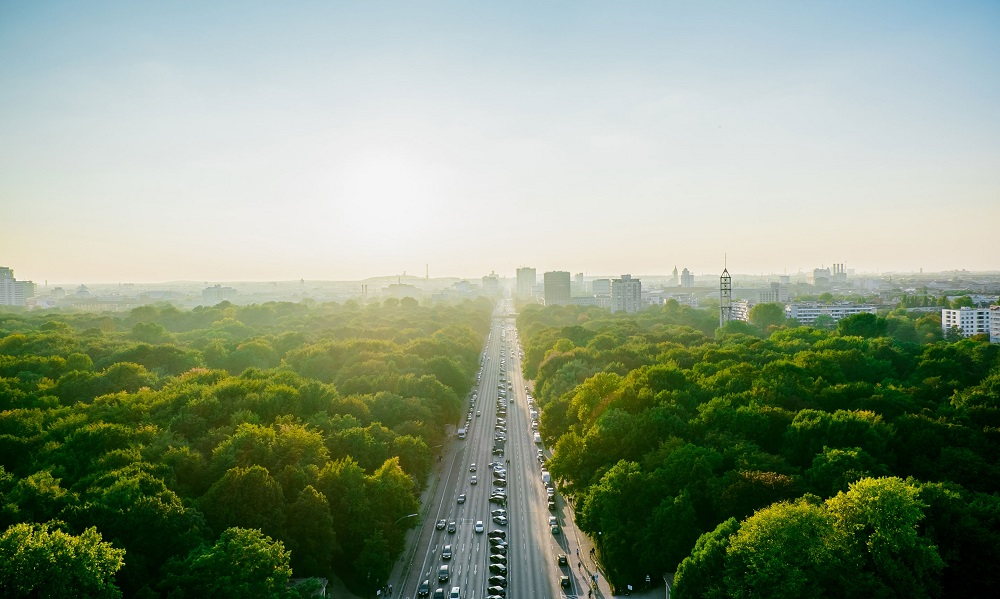 These are the 19 Cities With the Most Trees
