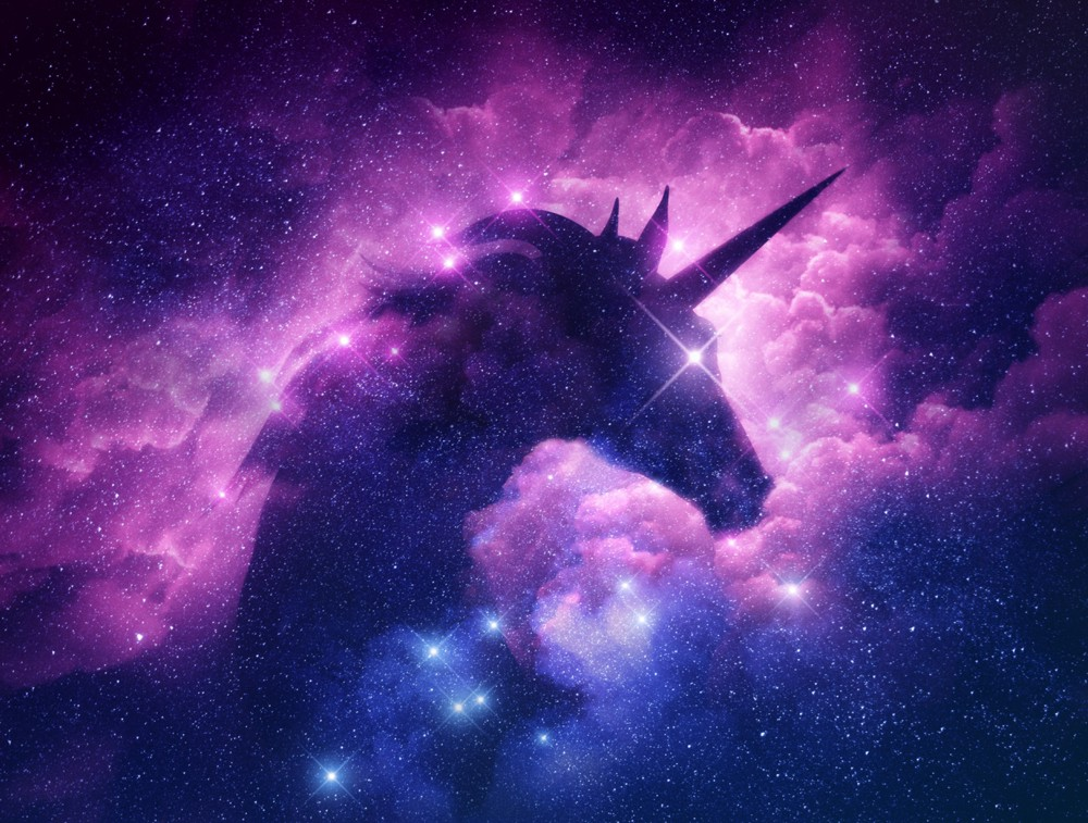 The 10 Biggest Unicorns in the World